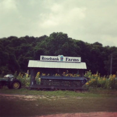 131. Rosebank Farms