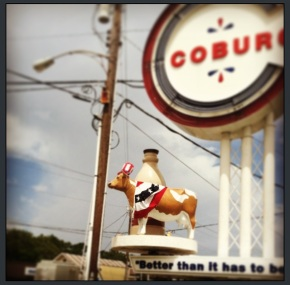 Happy 4th of July / An update on the Coburg Cow